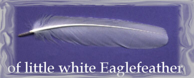 of little white Eaglefeather